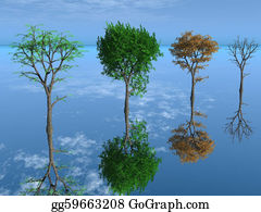 Four-Seasons - The Four Season Trees