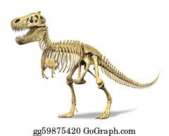 Jaw - T-Rex Skeleton. On White Background. Clipping Path Included.