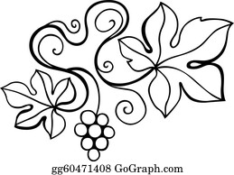 Vine - Vine Design Element