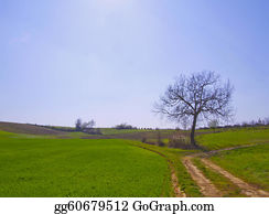 Birds-On-The-Tree-Silhouette - Landscape