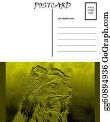 Border-Collie - Empty Blank Postcard Template Collie Dog Image
