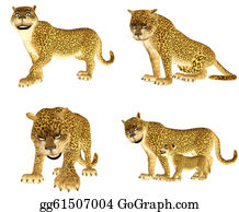The-Family-Cat - Leopard Pack