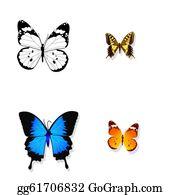 Prairie - Isolated Butterflies