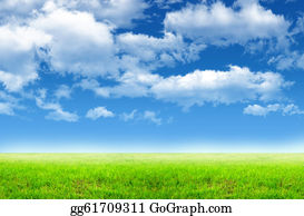 Blue-Sky - Green Field And Sky Blue With White Cloud