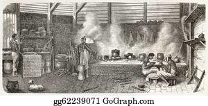Plantation - Dutch Guyana Bis