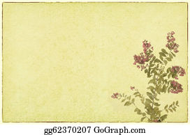 Crepes - Crepe Myrtle Flowers With Old Grunge Antique Paper Texture