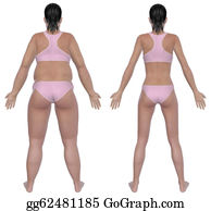Overweight - Weight Loss Before And After Rear View