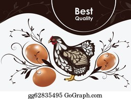 Poultry - Chicken And Eggs