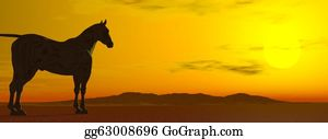 Prairie - Sun Contemplation