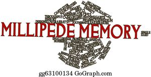Millimeter - Word Cloud For Millipede Memory
