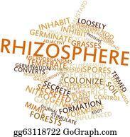 Nematode - Word Cloud For Rhizosphere