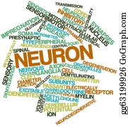 Conduction - Word Cloud For Neuron