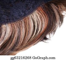 Wig - Wig On The Inner Side