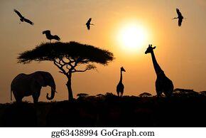 Birds-On-The-Tree-Silhouette - Animal Silhouettes Over Sunset On Safari In African Savannah