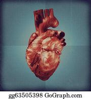 Heart-Surgery - Human Heart Vintage Blueprint. Grunge Medical Backgrounds