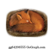Furry-Tail - Sleeping Red Fox In Its Hole