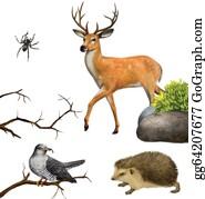 Antler - Deer, Spider. Hedgehog, Cuckoo On A Tree Branches.