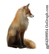 Poultry - Adult Fox, Side View. Sitting