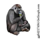 Gorilla - Sitting Female Gorilla Eating An Aple With Baby In Her Hands.
