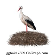 Stork - Adult Stork Standing In Its Nest. Spring