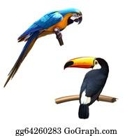 Blue-Elephant - Colorful Blue Parrot Macaw, Toucan