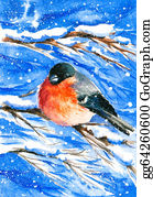 Cardinal-Bird - Bullfinch