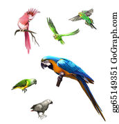 Jungle - Pink, Gray And Green Parrot, Macaw, Budgerigar, Isolated Illustration On White Background.