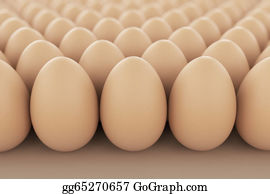 Poultry - Eggs.