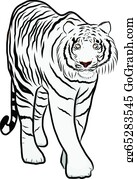 Growl - Hand Drawn Tiger Vector