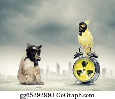 Recycle-Technology - Cat And Parrot In Gas Masks