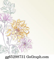 Chrysanthemum - Branch Of Chrysanthemum.