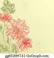Chrysanthemum - Branch Of Chrysanthemum