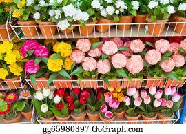 Flower-Pot - Paper Flower In Flower Pot