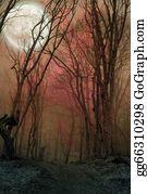 Forest - Dark Night Forest Agaist Full Moon