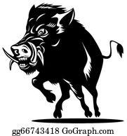 Boar - Wild Pig Boar