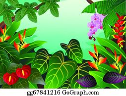 Tropical-Rainforest - Tropical Forest