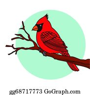 Cardinal-Bird - Red Bird Cardinals