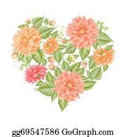 Chrysanthemum - Chrysanthemum Holiday Card.