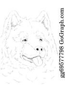 Huskies - Malamute Portrate