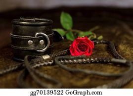 Whip - Whip, Cuff And Rose