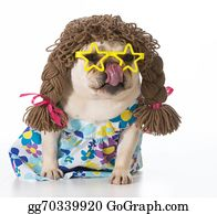Wig - Female Dog