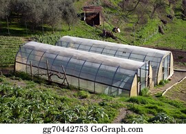 Cultivation - Greenhouse For The Cultivation Of Salad