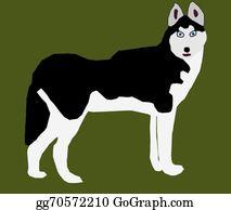 Huskies - Siberian Husky