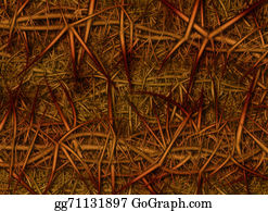 Crown-Of-Thorns - Crown Of Thorns Background