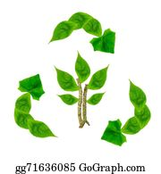 Plant-Life-Cycle - Recycle Leaves Isolated On White Background, Conservation Concep