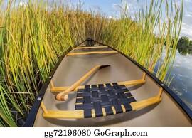 Canoe - Canoe And Cattails