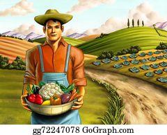 Basket - Vegetable Farming