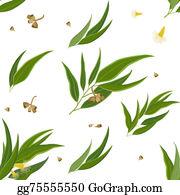 Eucalyptus - Diagonal Pattern Eucalyptus Leaves