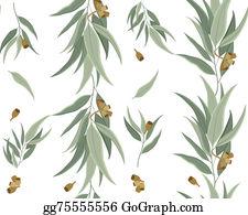 Eucalyptus - Pattern Eucalyptus