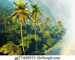 Tropical-Rainforest - Beautiful Palm Trees